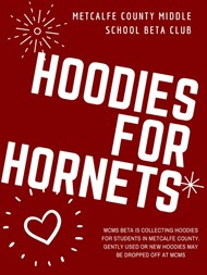 Hoodies for Hornets