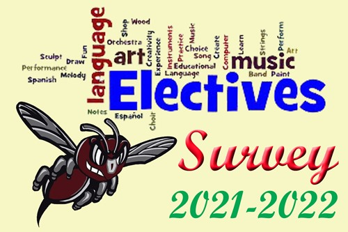 Electives Survey